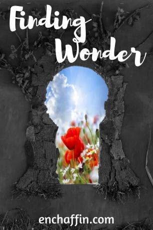 Finding Wonder
